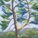 Arboretum Tree