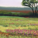 Nature scene by Mary Hollinger